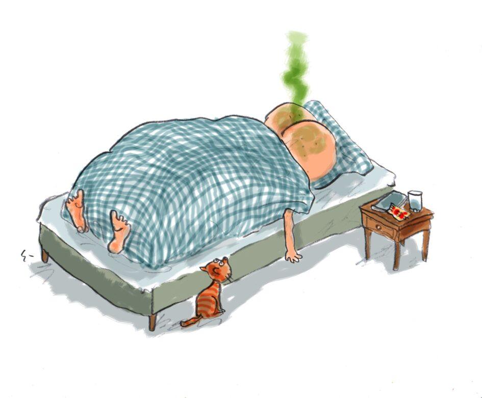 At være røvsyg. Illustration af Gert Ejton til Den Danske Sprogkreds´ julekalender